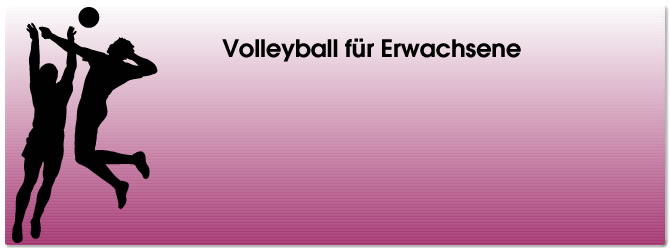 Volleyballkampf